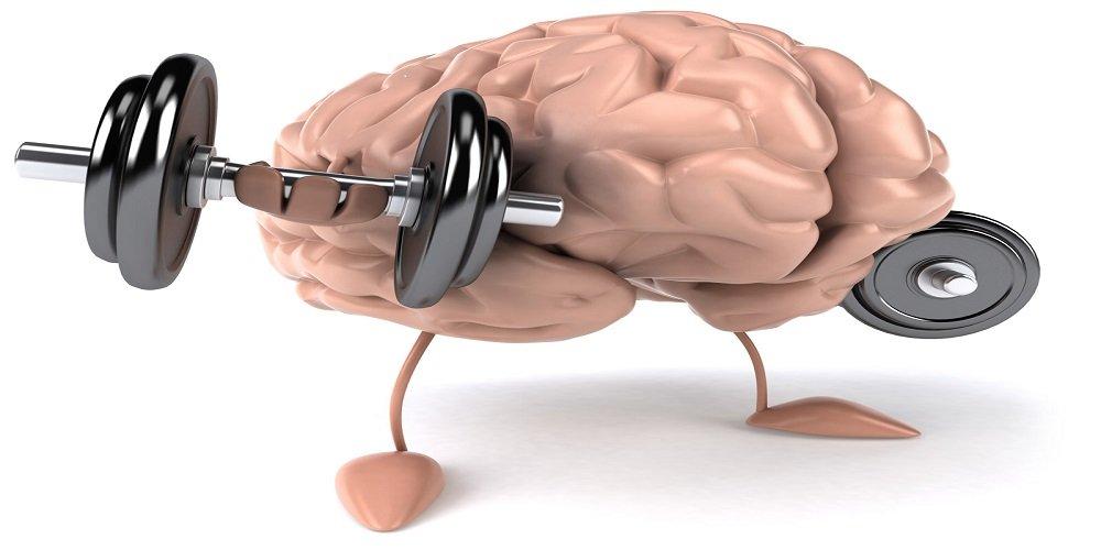 brain fitness invecchiamento