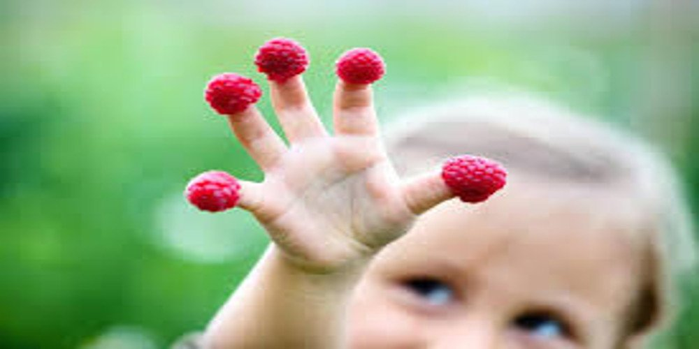 Mindful Eating- un approccio al cibo a misura di bambino