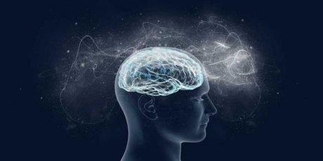 Paradosso del lobo frontale