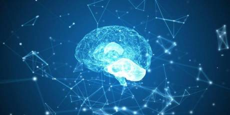 perchè studiare neuropsicologia