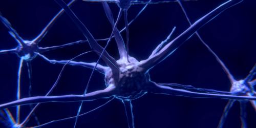 neuro-imaging trauma sintomi dissociativi